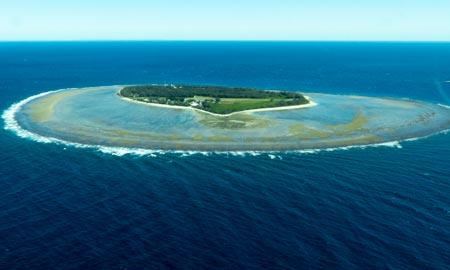 Lady Elliot Island – Paradiesische Insel im Great Barrier Reef