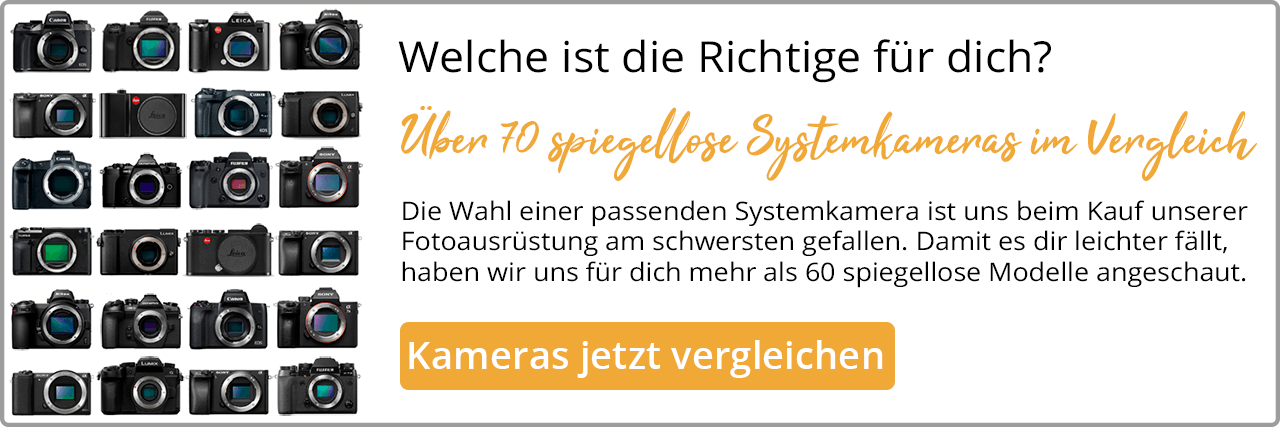 Systemkamera im Vergleich Banner